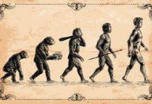 У истоков биосоциальной теории эволюции человека