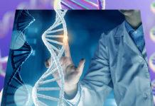 Современная генетика в решении ключевых проблем эволюции